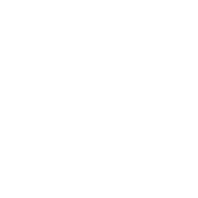 Ellis Logo White